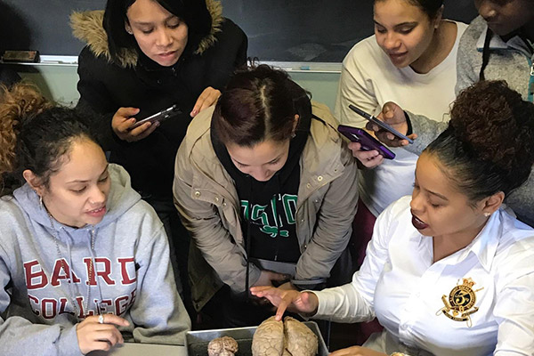 Students look closely and take photos as instructor shows a model of the human brain.